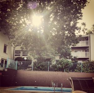 Marvelous Summer Monday