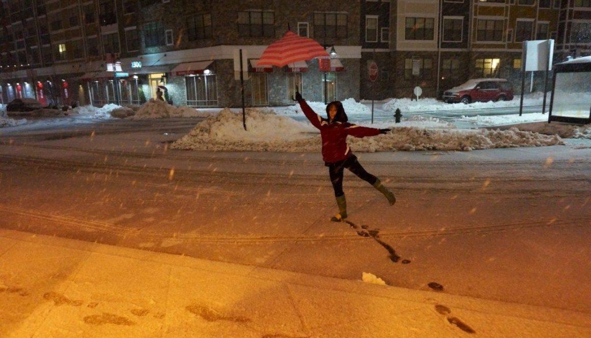 zen-kat-in-the-snow.jpg