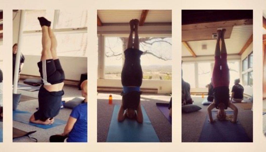 headstands-at-yogaville.jpg