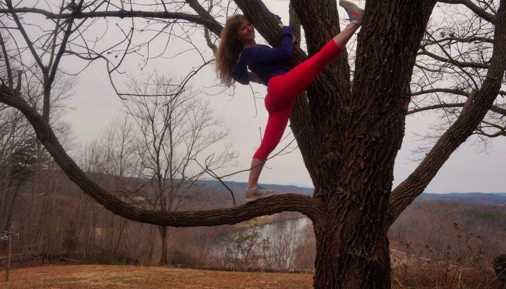 the-zen-kat-in-a-tree.jpg