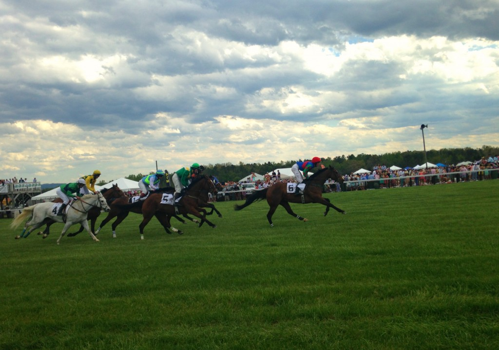 Foxfield horse races
