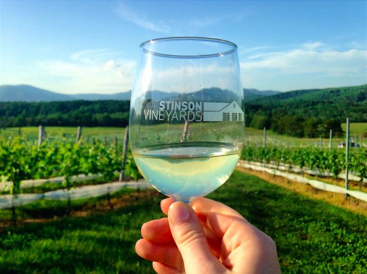 stinson vineyard