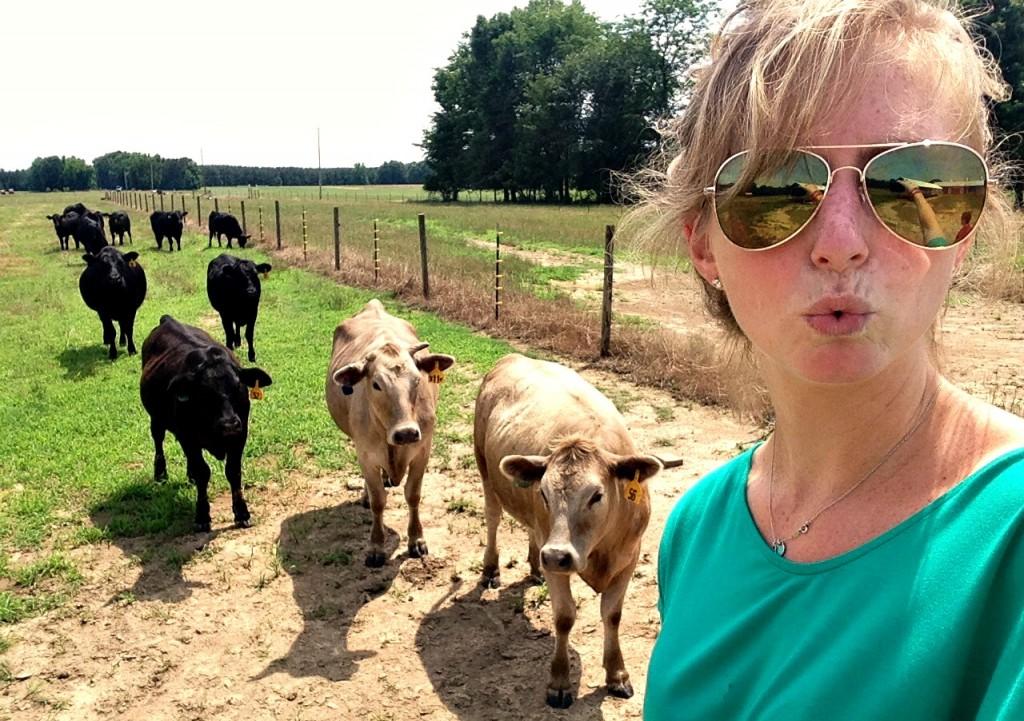 cow_selfie