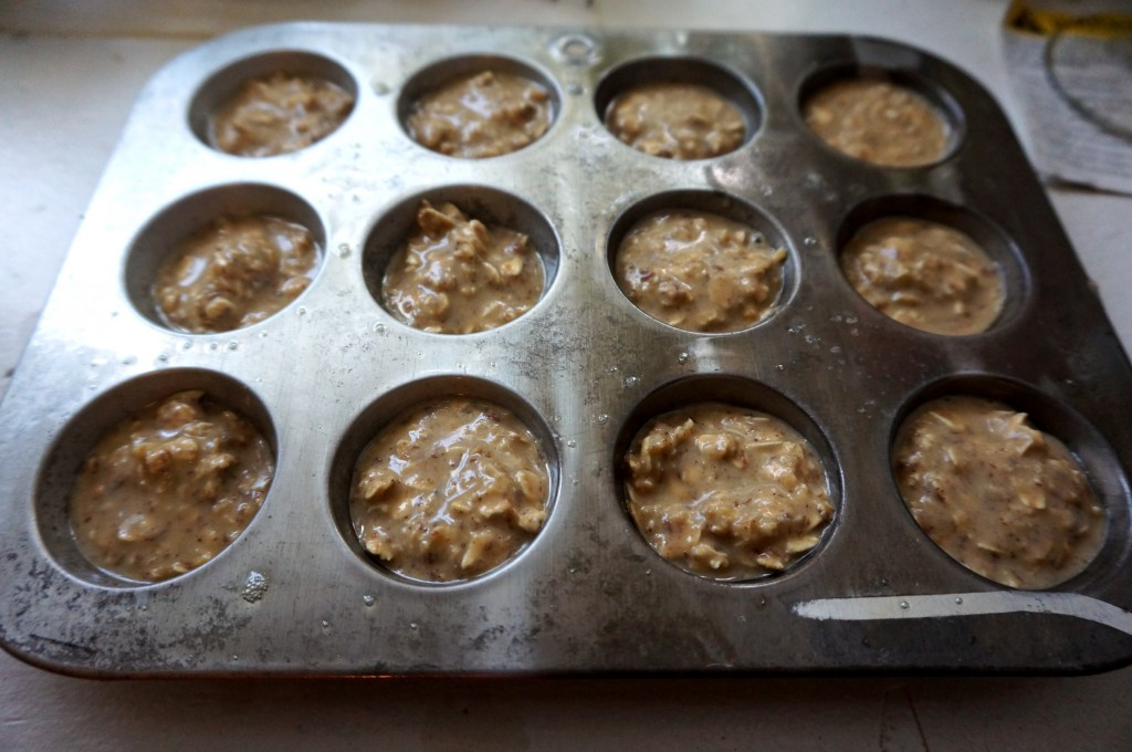 pb2protein_muffin_batter