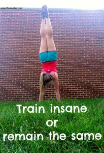 train_insane_or_remain_the_same
