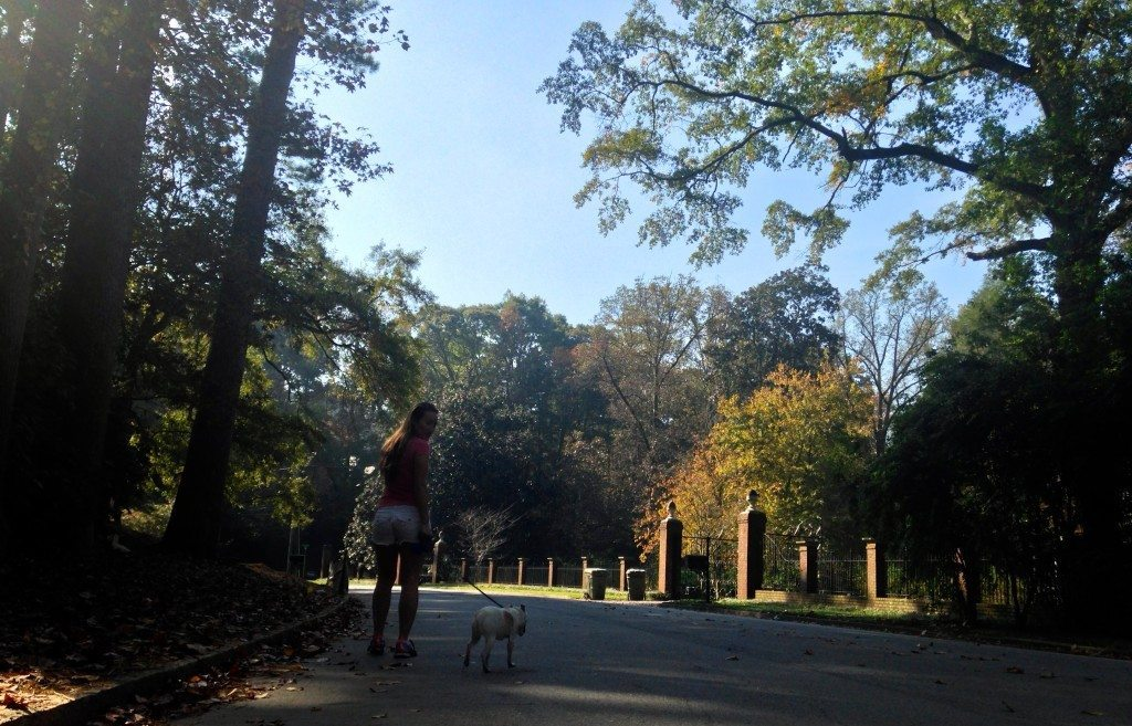 BuckHead-Atlanta