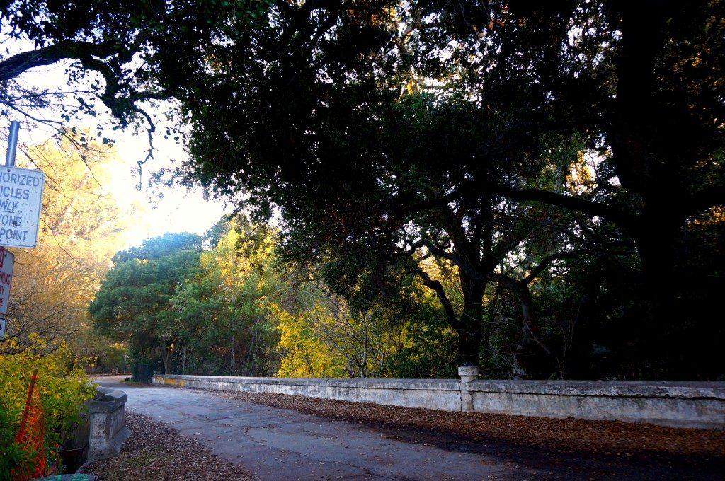 palo_alto_hikes