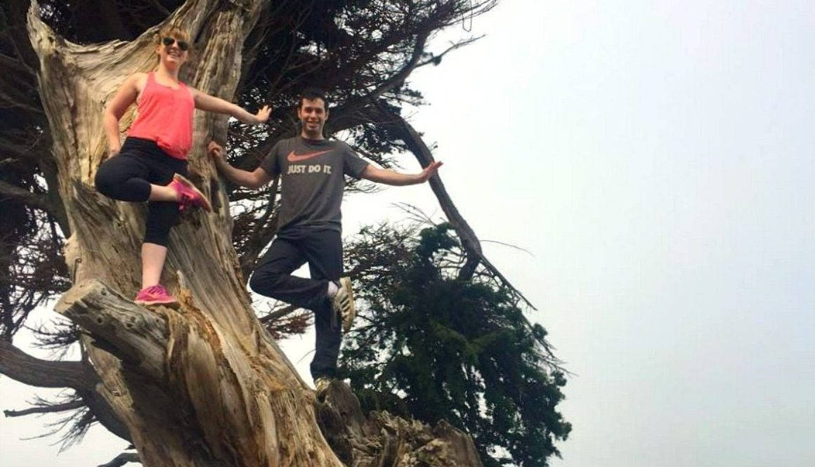 yoga_in_a_tree