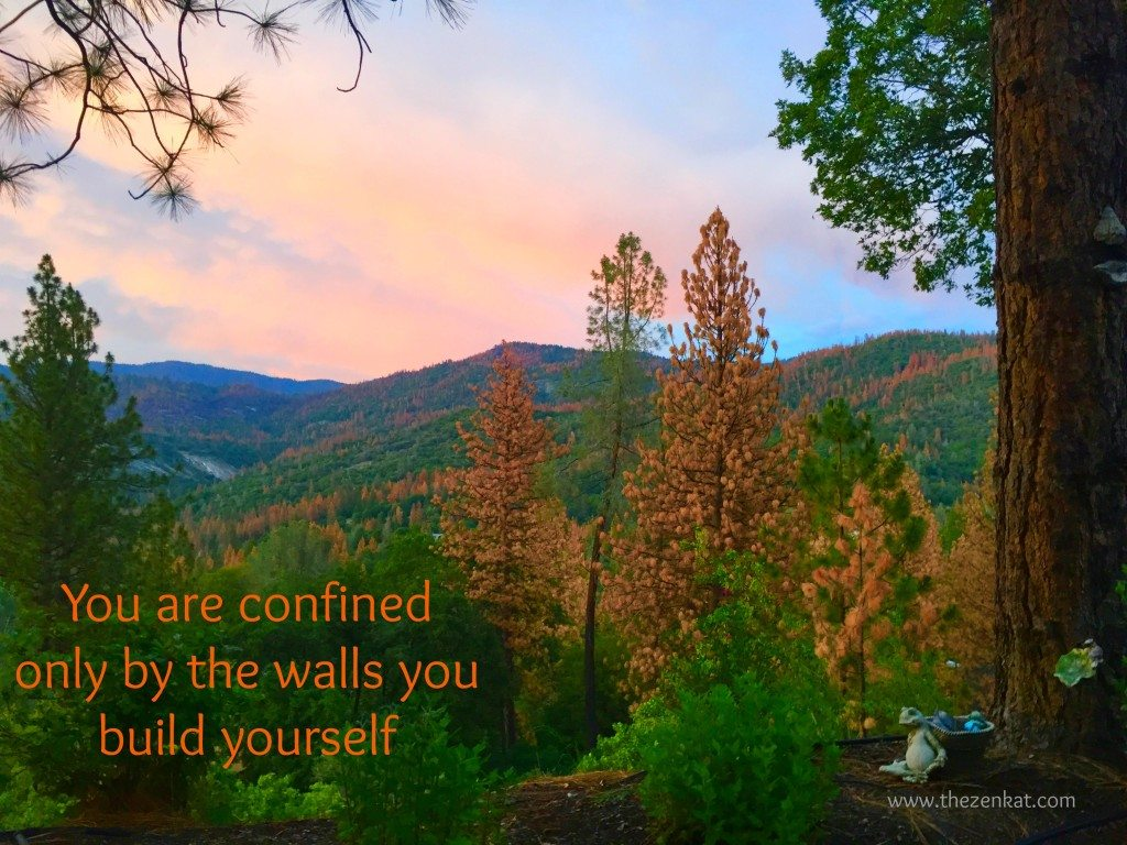 confined-walls-quote