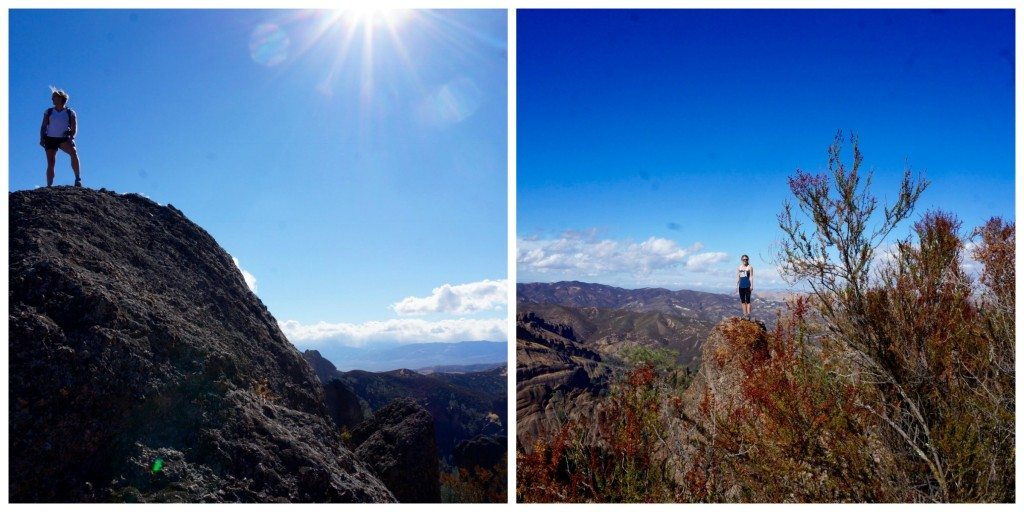 views_from_the_pinnacles